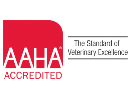 American Animal Hospital Association Job Posting