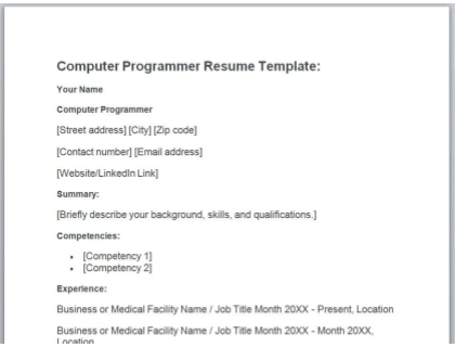 Computer Programmer Resume Free Template