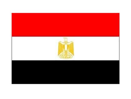 Job Posting Egypt