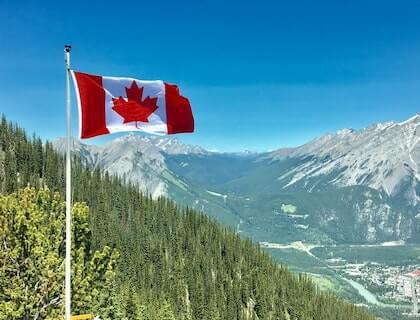 What To Do If You Are Laid Off In Canada