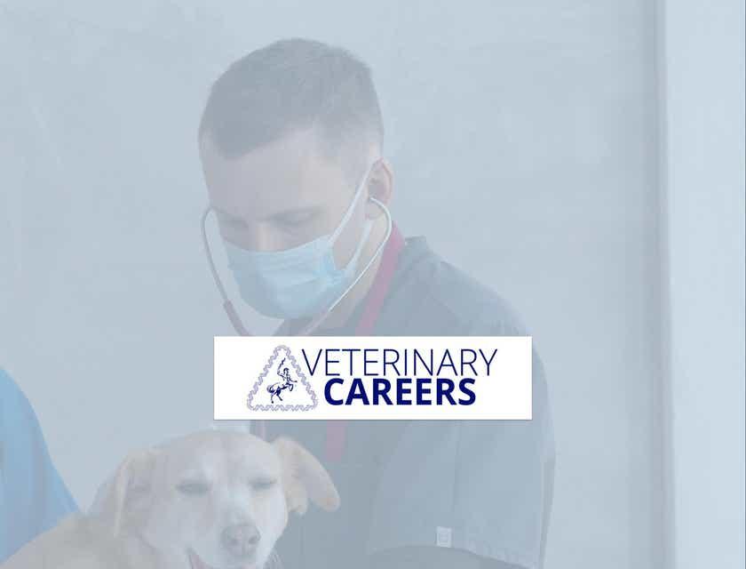 VeterinaryCareers.com.au
